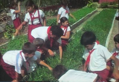 キューバの学校で農作業