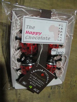 テントウ虫チョコ500円
